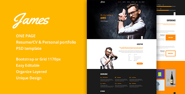 James Resume/CV & Personal portfolio PSD Template