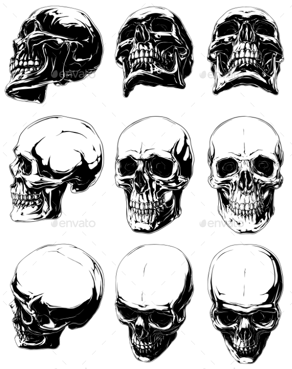 Detailed Graphic Black and White Human Skulls Set - Tattoos Vectors