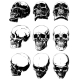 Detailed Graphic Black and White Human Skulls Set - GraphicRiver Item for Sale