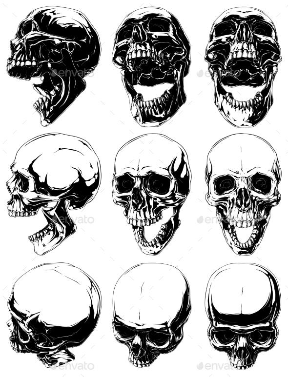 Realistic Detailed Graphic Skulls Vector Set - Tattoos Vectors