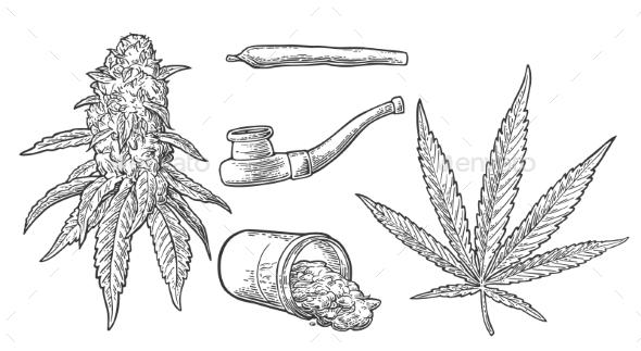 Marijuana Set - Flowers & Plants Nature