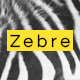 Zebre - Minimal, Agency & Porfolio WP Theme - ThemeForest Item for Sale