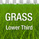 Grass Lower Third Pack - VideoHive Item for Sale