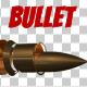 Bullet Transforming
