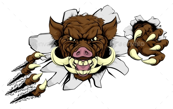Boar Mascot - Animals Characters