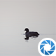 Water Bird - VideoHive Item for Sale