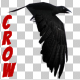 Cartoon Crow Flying - VideoHive Item for Sale