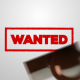 Wanted - Stamp - VideoHive Item for Sale