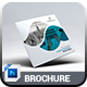 Square Brochure - GraphicRiver Item for Sale