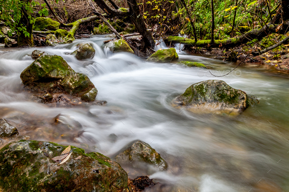 River Majaceite - Stock Photo - Images