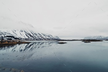 Tales of a fjord