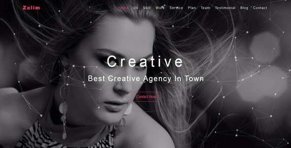 Zalim- One Page Creative / Multipurpose Template