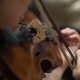 Musician Plays the Violin in Philharmonic Society