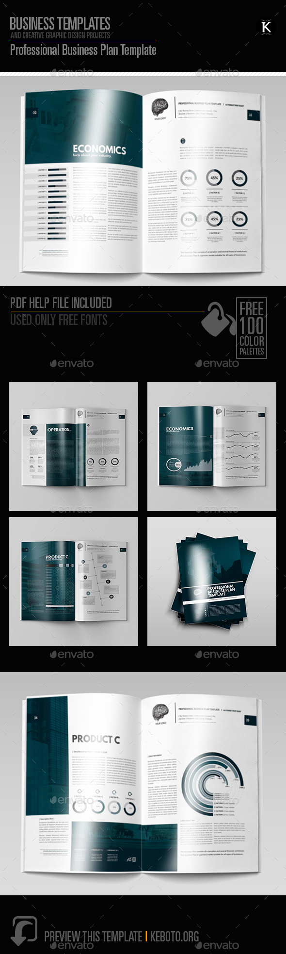 Professional business plan template by keboto graphicriver professional business plan template miscellaneous print templates flashek Gallery