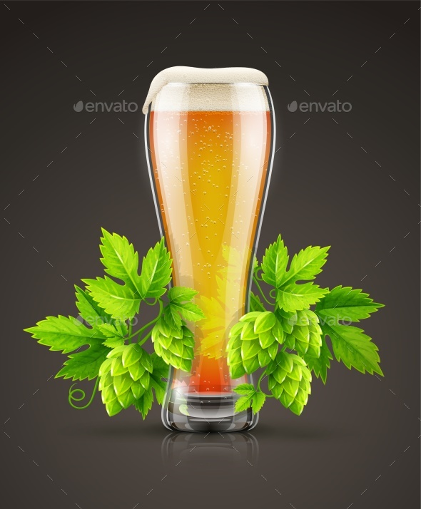 Glass of Light Lager Beer with Hop Plant Buds - Vectors