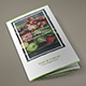 Brochure – Organic Food Tri-Fold - GraphicRiver Item for Sale