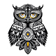 Owl Bird - GraphicRiver Item for Sale