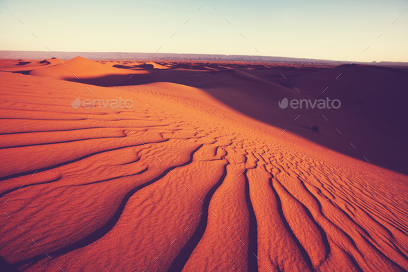 Sand dune - Stock Photo - Images