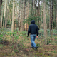 Person Walks Through Woodland - VideoHive Item for Sale