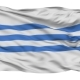Podgorica City Isolated Waving Flag - VideoHive Item for Sale