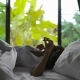 Young Woman Waking up in Bed Stretching Arms Coming to Window - VideoHive Item for Sale