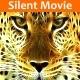 Silent Movie - AudioJungle Item for Sale