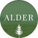 Alder - A Responsive WordPress Blog Theme Nulled