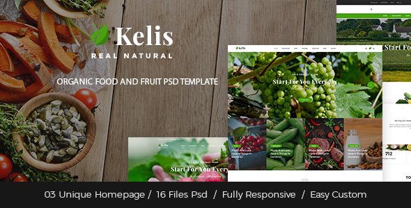 Kelis – Organic Food And Fruit Store PSD Template