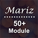 Mariz - 50+ Module Responsive Email Template + Campaign Monitor + Mailchimp + Stampready Builder - ThemeForest Item for Sale