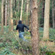 Person Runs Through The Woods - VideoHive Item for Sale