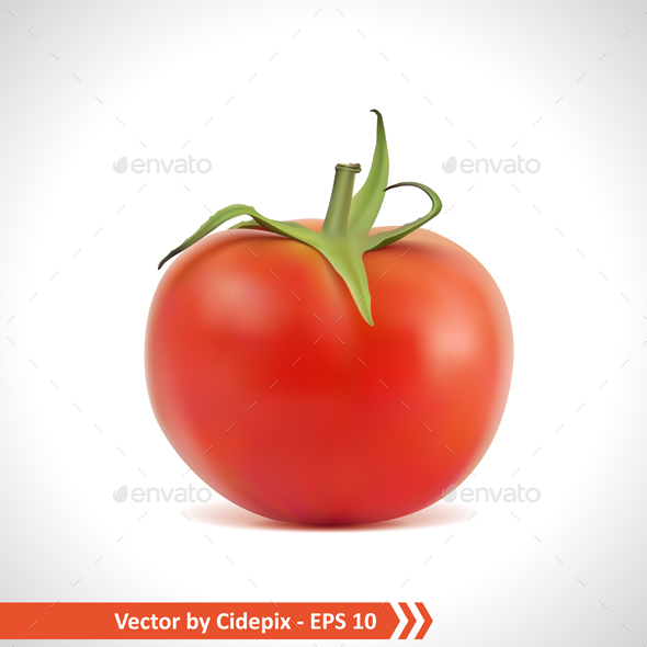 Red Tomato - Food Objects