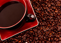 Java in Cup and Saucer Sitting in Coffee Beans - PhotoDune Item for Sale
