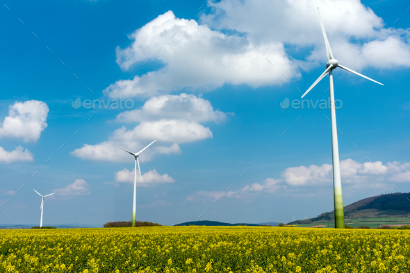 Wind engines in fields of rapeseed - Stock Photo - Images