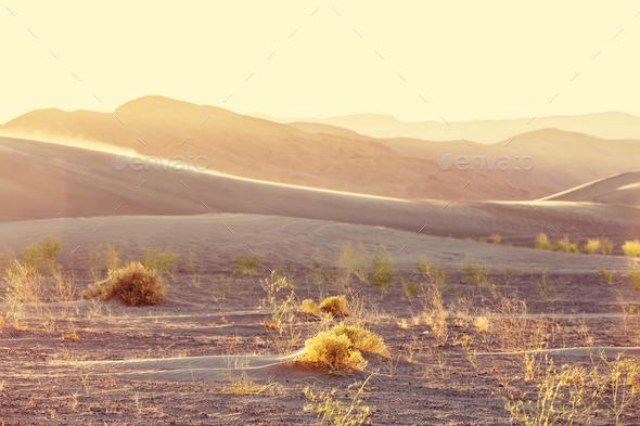 Sand dunes - Stock Photo - Images