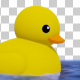 Swimming Rubber Duck - VideoHive Item for Sale