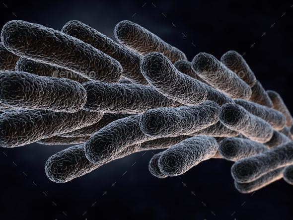 Legionella Pneumophila Bacteria - Stock Photo - Images