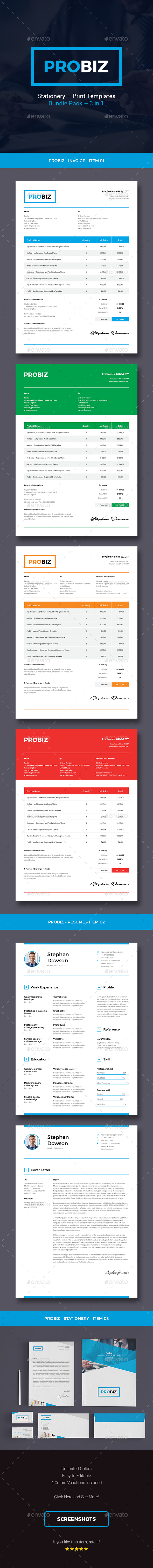 ProBiz – Business and Corporate Stationery Bundle - Stationery Print Templates