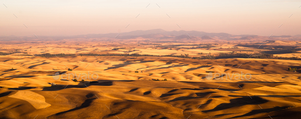 Rolling Hills Agricultural Land Palouse Region Eastern Washington - Stock Photo - Images