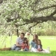 Happy Family Spends Time on a Picnic Near the Blossoming Apple-Tree