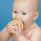 Baby Eats Peeled Apple Holding It in Both Hands