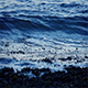 Waves Breaking On Seaweed In The Evening - VideoHive Item for Sale