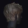 Hair0011 0007.  thumbnail