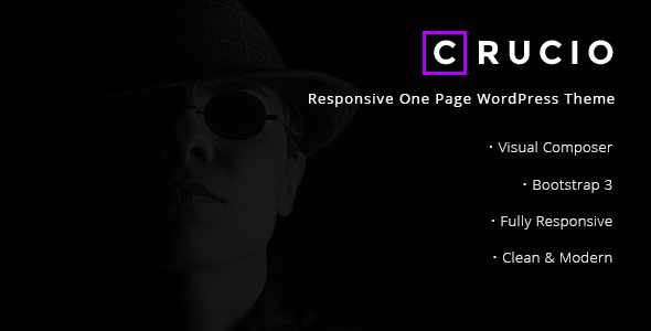 ThemeForest Crucio Responsive One Page WordPress Theme 19973422