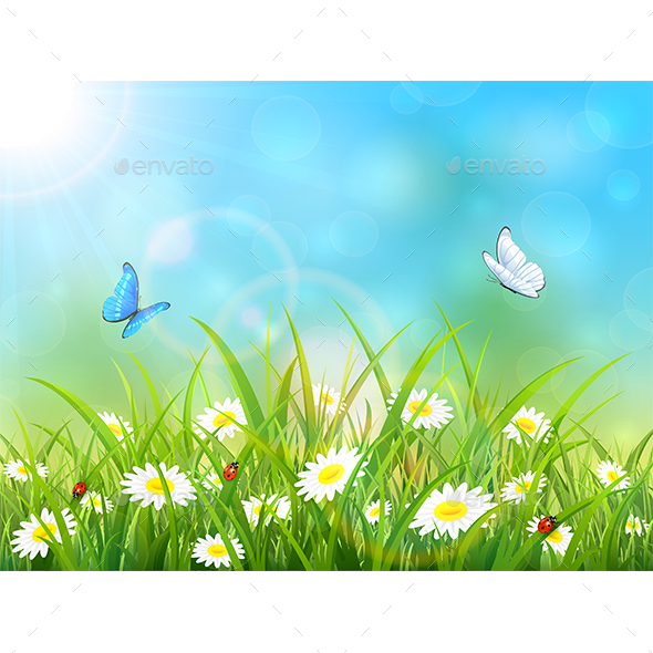 Blue Nature Background with Sun and Butterflies - Flowers & Plants Nature
