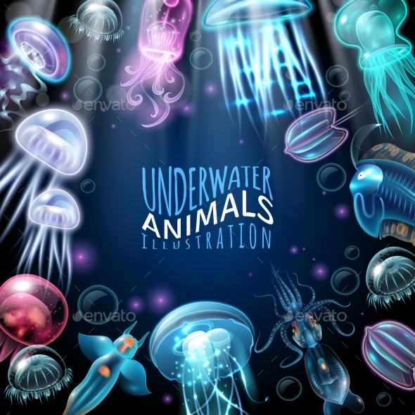 Underwater Animals Frame Background - Animals Characters