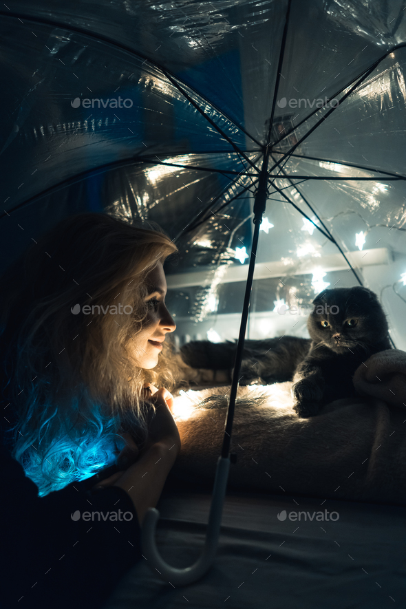 A cat and woman under an umbrella with garlands - Stock Photo - Images