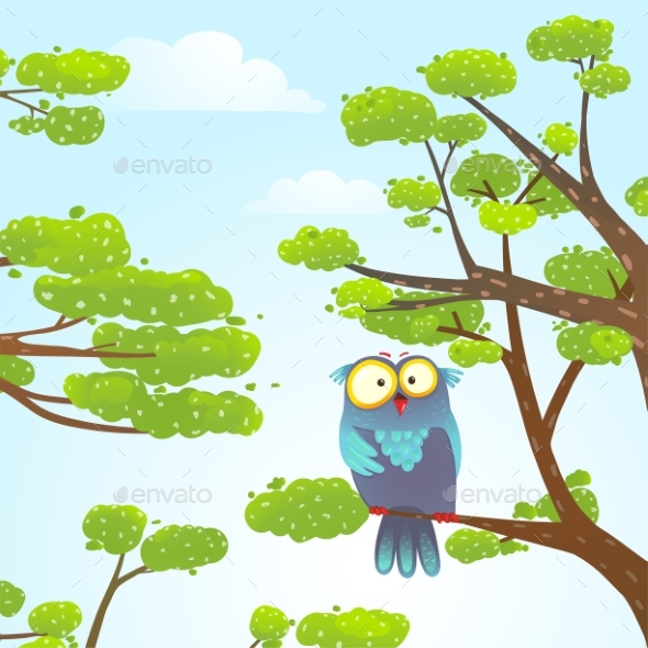 Owl Sitting on Tree in Wild Nature in Sky - Animals Characters