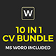 Big Resume Bundle - GraphicRiver Item for Sale