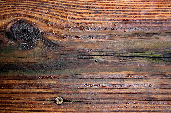 Wet Wood Background - Wood Textures