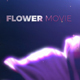 Titles Flower - VideoHive Item for Sale